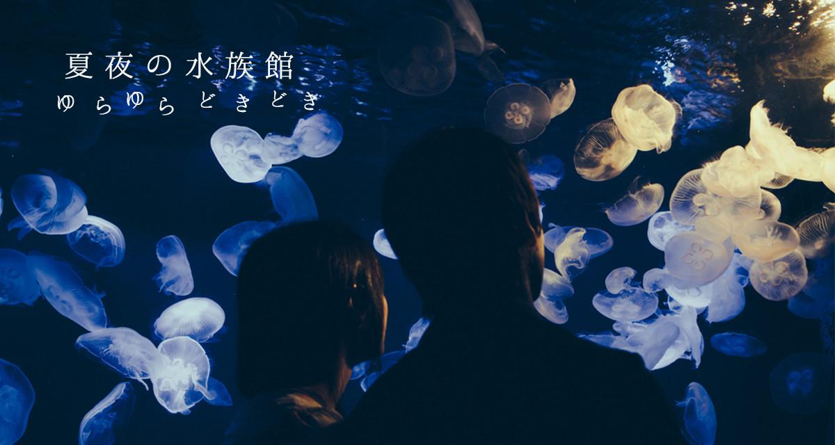 【水族館編】東京から1時間以内!今からロマンチックなデートを演出する注目のナイトイベント3選