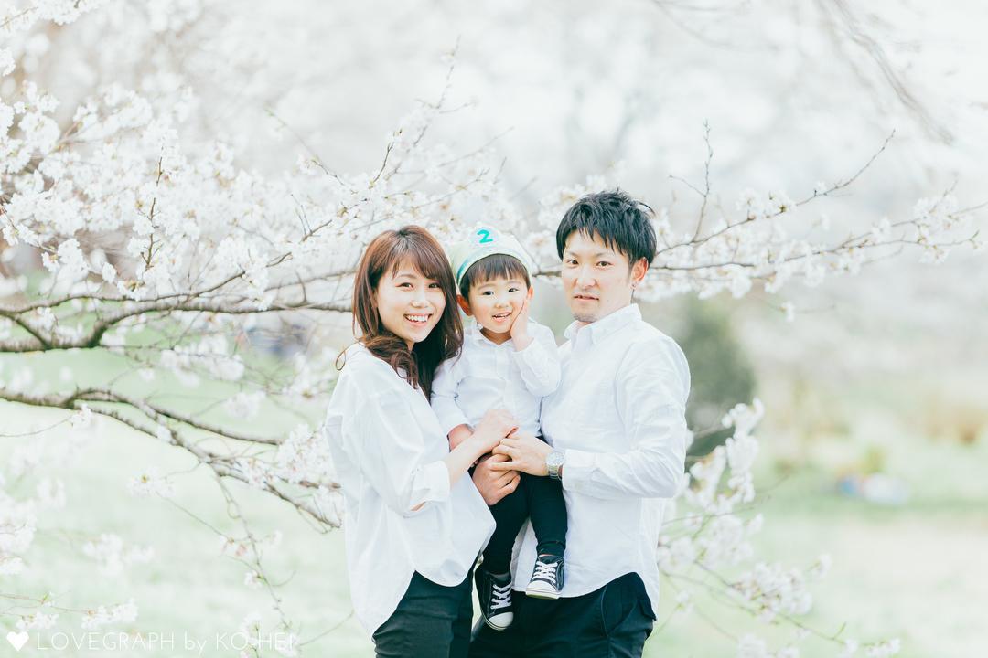 2020桜割引キャンペーンスタート♩  1番目の写真