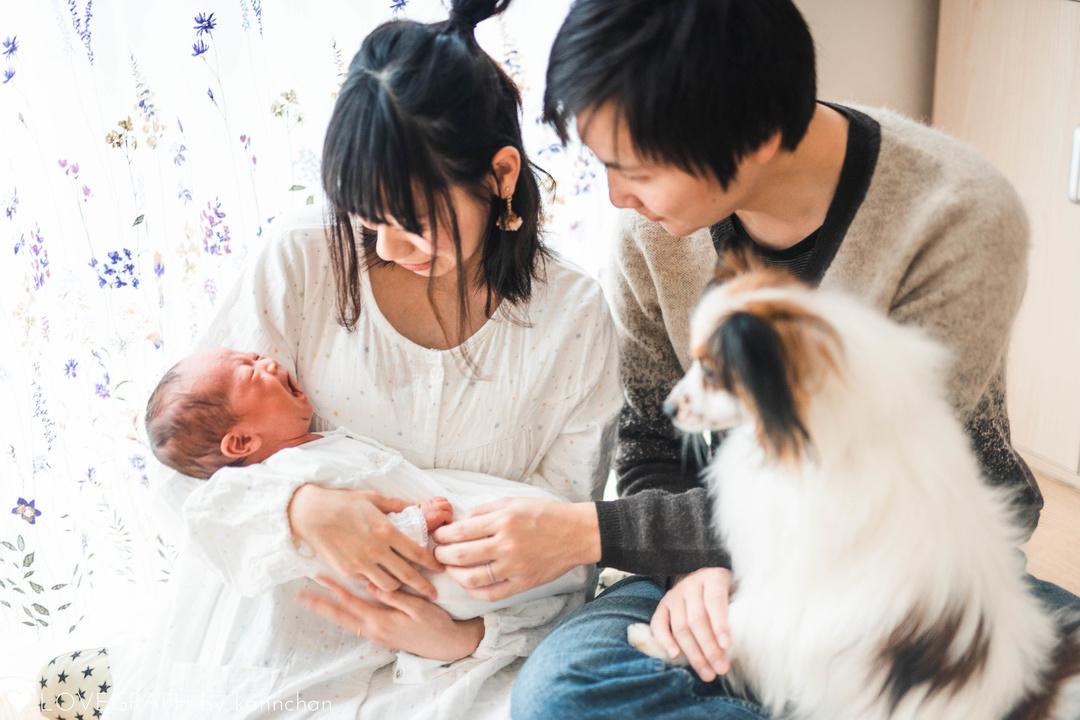 Katayama Family | 家族写真(ファミリーフォト)