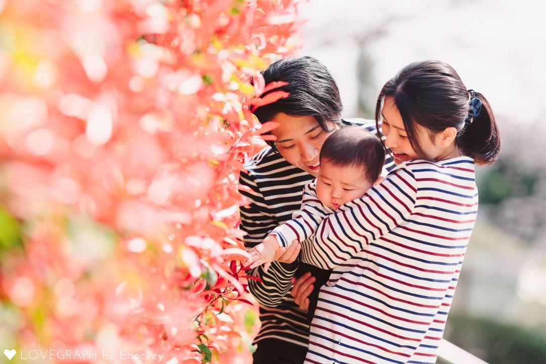 Haruto Family  | 家族写真(ファミリーフォト)