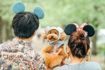 Guriko Family | 家族写真(ファミリーフォト)