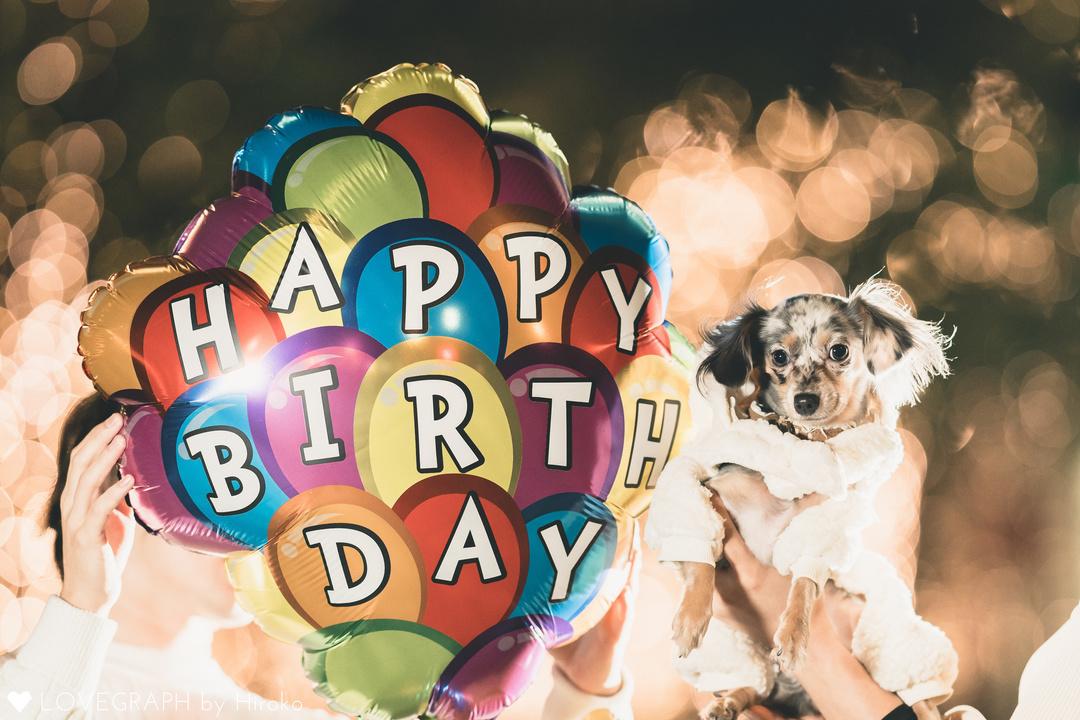 Vivi 1st birthday | カップルフォト