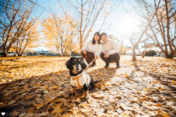 Lulu Family | 家族写真(ファミリーフォト)