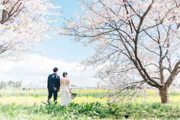 Sakura | 夫婦フォト