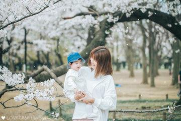 sakura drop | 家族写真(ファミリーフォト)