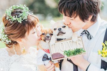 Ayano×Kiyoshi | 夫婦フォト