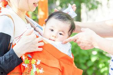 SHINSENEN | 家族写真(ファミリーフォト)